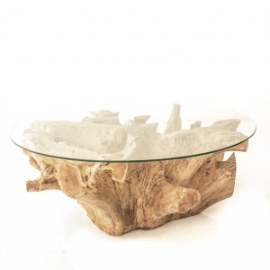 Teak Root Glass Top Coffee table